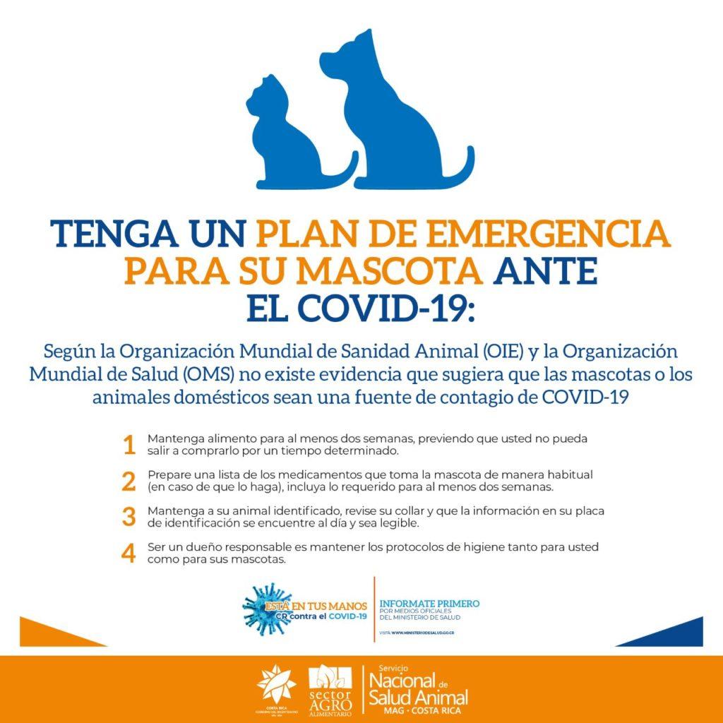 Plan de Emergencia para su Mascota ante Covid19